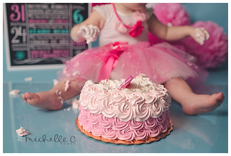 Cake Smash Orlando First Birthday Photographer Michelle C Photo